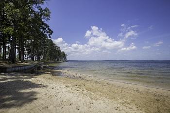 Toledo Bend Lake - Many, Louisiana -