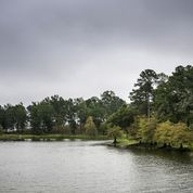 Zwolle Toledo Bend Lake