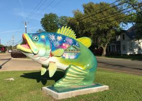 """FISH A"" by artist Katherine Woodruff"