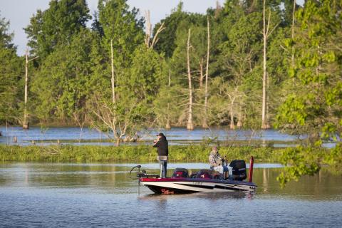 Toledo Bend Remains Strong in Bassmaster's Top 100 List